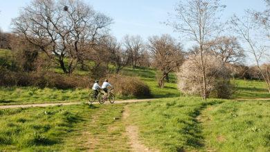 Photo of Doğada Yürüyüş Rotaları: Koru, Köy, Sahil