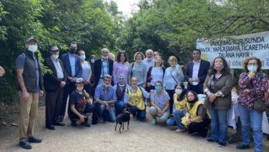 Photo of Validebağ Korusu Projesi İçin Yürütmeyi Durdurma Kararı Verildi